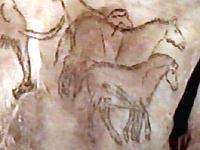 urtiere in der steinzeit