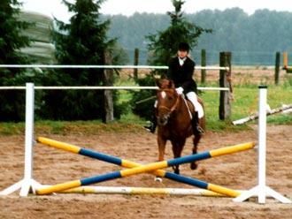 versammelnde übungen pferd